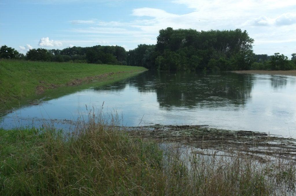 Wasser vor dem Damm